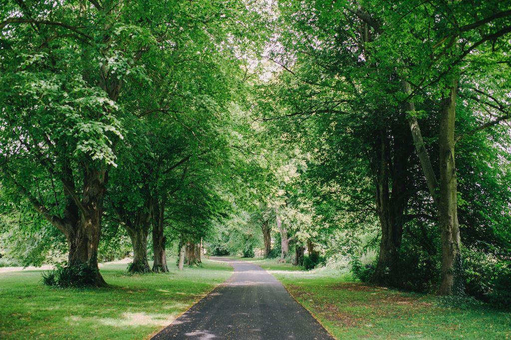 Saltcote Place Rye